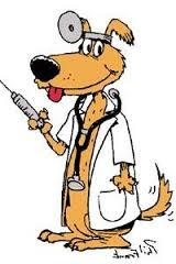 image of a dog dressed as a doctor holding a vaccination needle